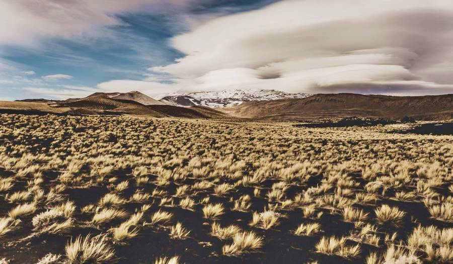 Paisaje volcánico en la Payunia, Ruta 40, Mendoza