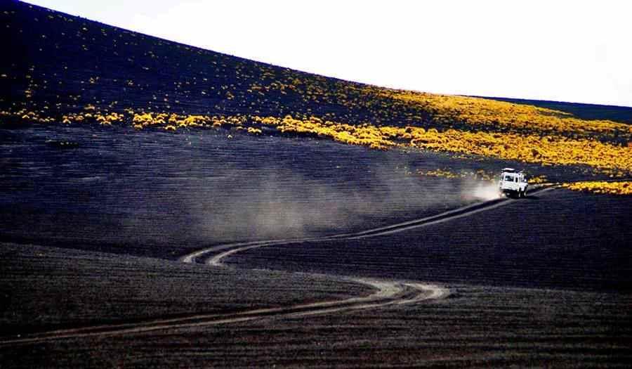 cinder field in La Payunia, Ruta 40, Mendoza