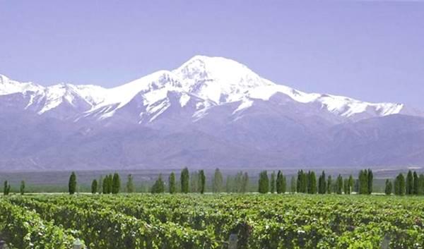 Tupungato, volcán y viñas, Ruta 40, Mendoza