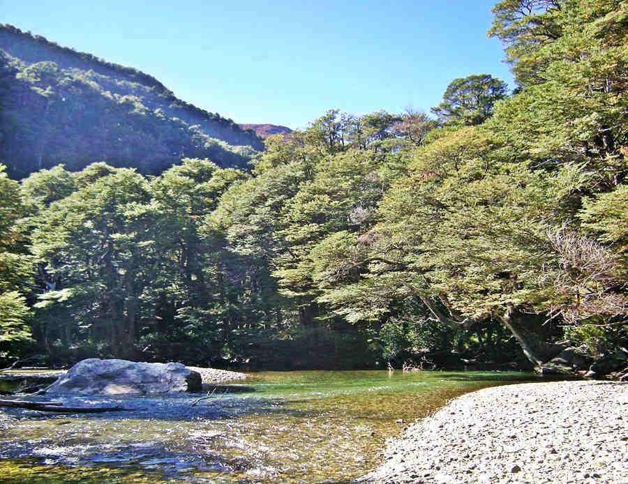 Pichi Traful River, Neuquén, Ruta 40, Road of the Seven Lakes