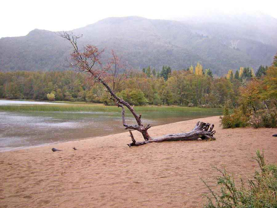 Lake Falkner, Seven Lakes Road