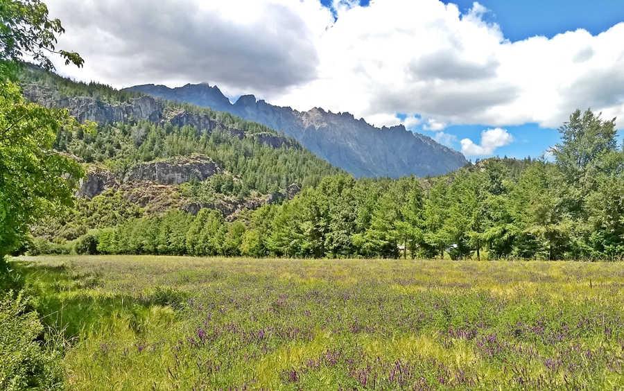 Cerro Piltriquitron, El Bolsón Ruta 40, Río Negro Patagonia