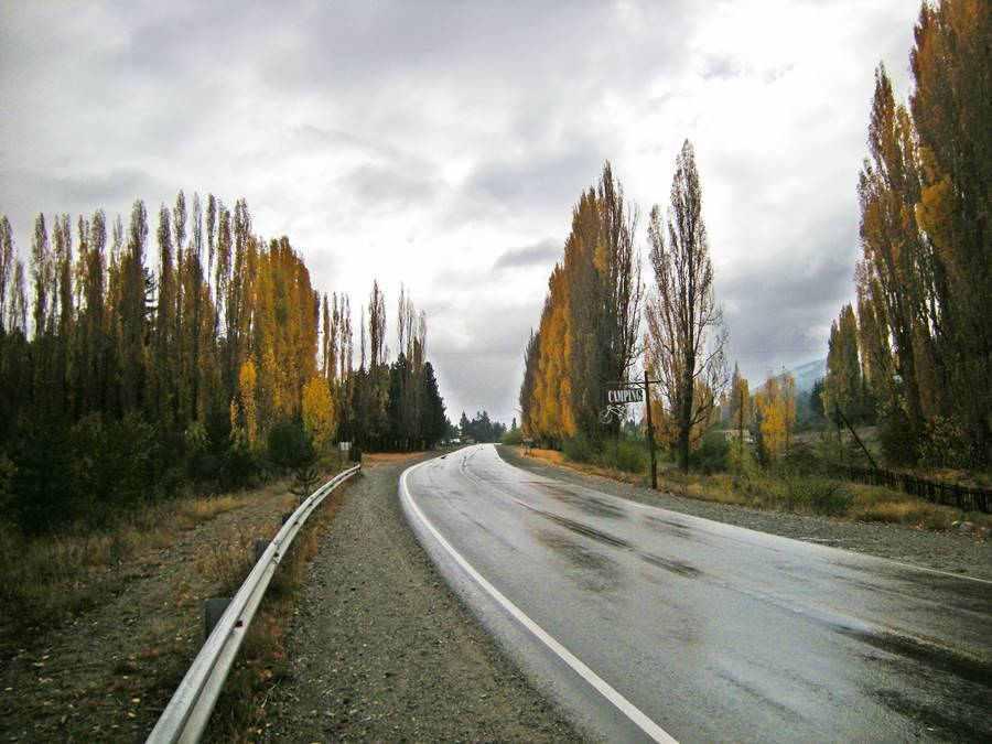 El Foyel en otoño Ruta 40, Río Negro Patagonia