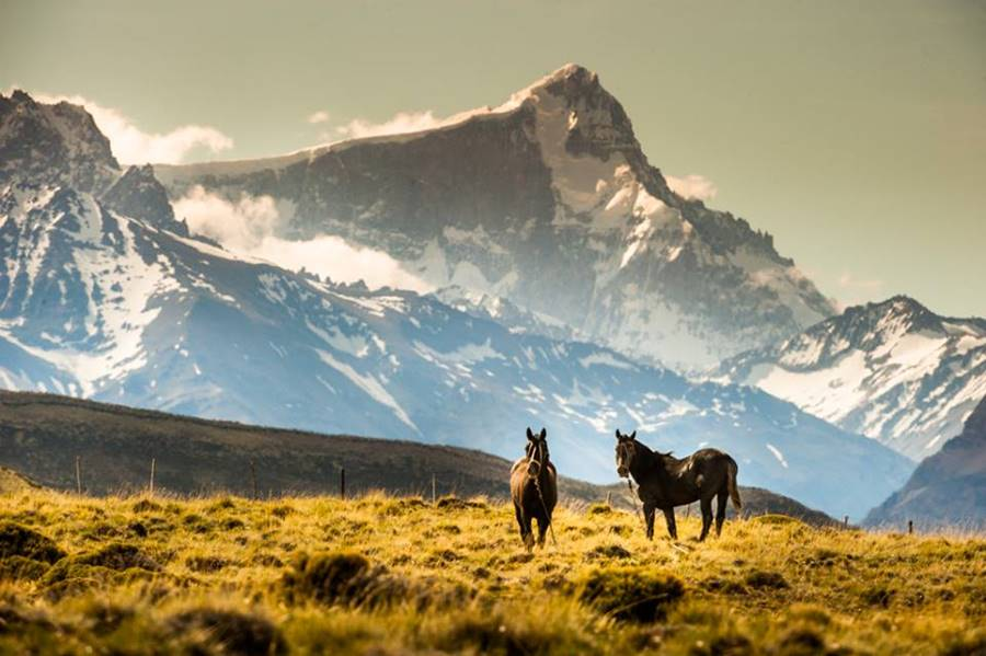 Monte San Lorenzo desde Estancia Menelik, Parque Nacional Perito Moreno Ruta 40, Santa Cruz Patagonia